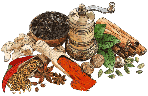 PFI Fine Quality Spices Illustration
