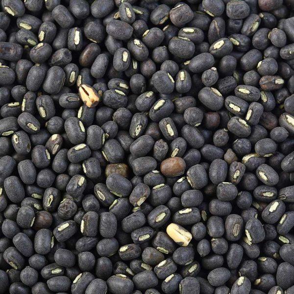 Black Matpae