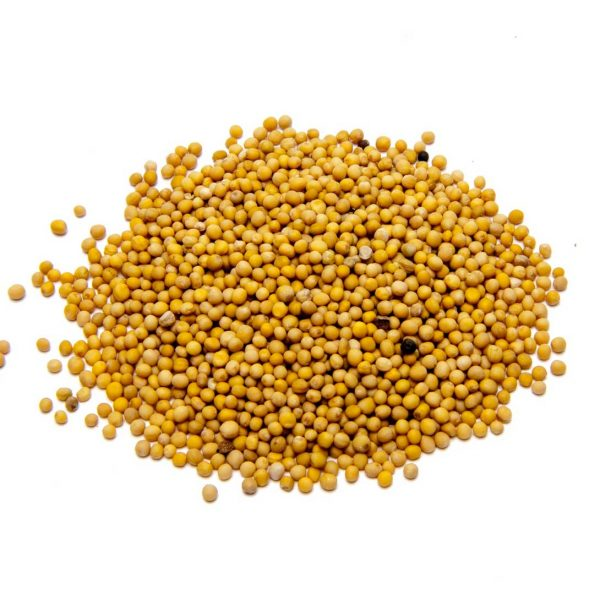 Mustard Seed Yellow Whole