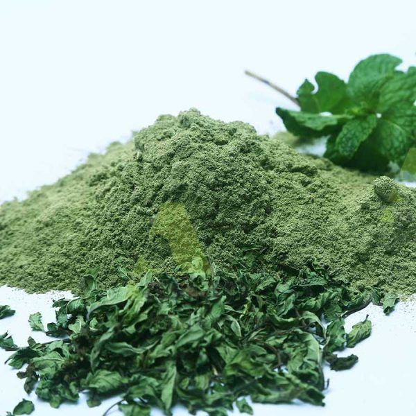 dried mint leaves powder